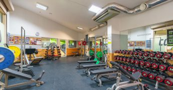 Free weights zone - Sopot