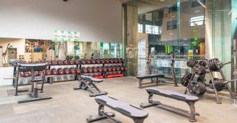 Free weights zone - Warszawa Focus