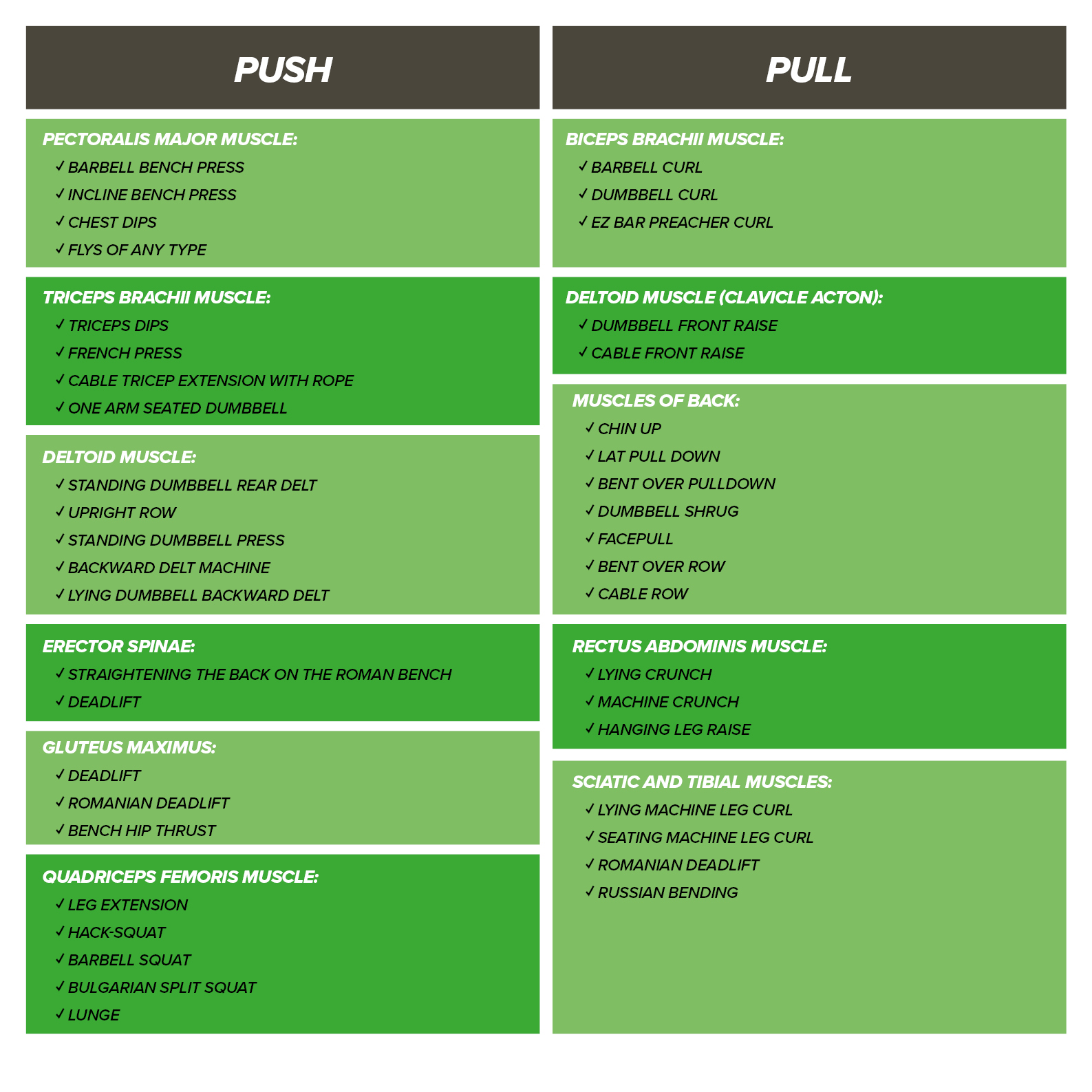 "Characteristics Of ""push&pull"" Training"